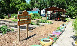 Brightmoor Youth Garden